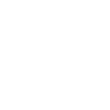 Italian Specialo Weddings