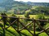 locanda-landscape