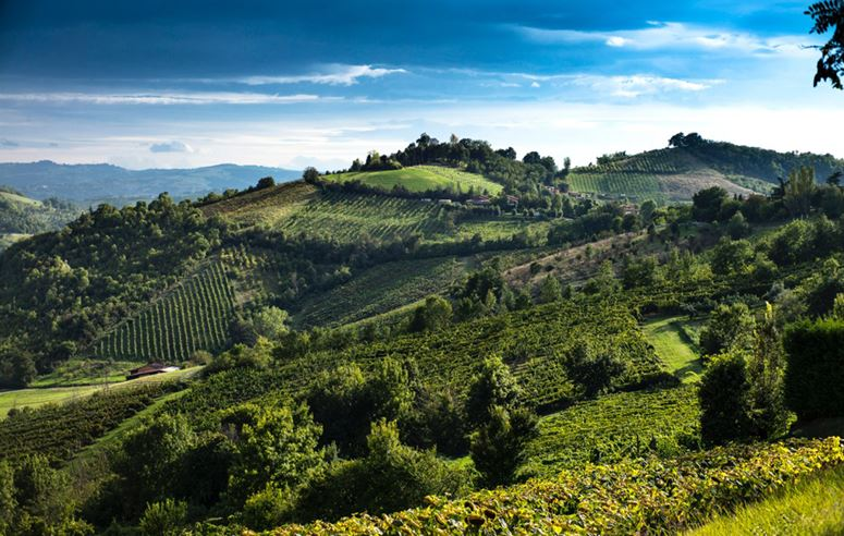 Panoramic Views Of Italian Countryside From Locanda